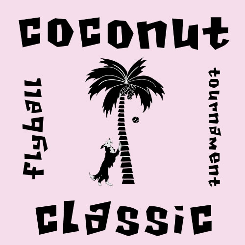 Coconut Classic Flyball Tournament